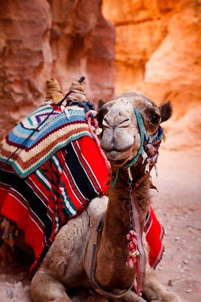 Dovolenka Egypt – spoznajte úžasné svetové pamiatky