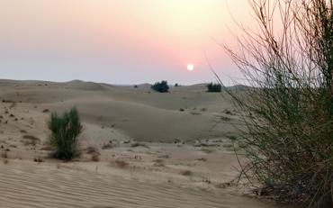 Púšť v Dubaji