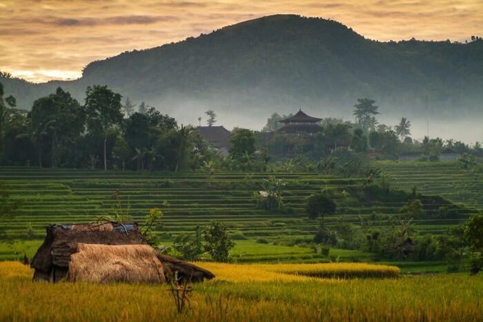 Bali Sidemen