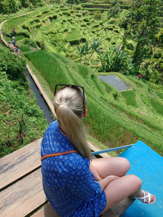 Bali ryžové polia Tegallalang